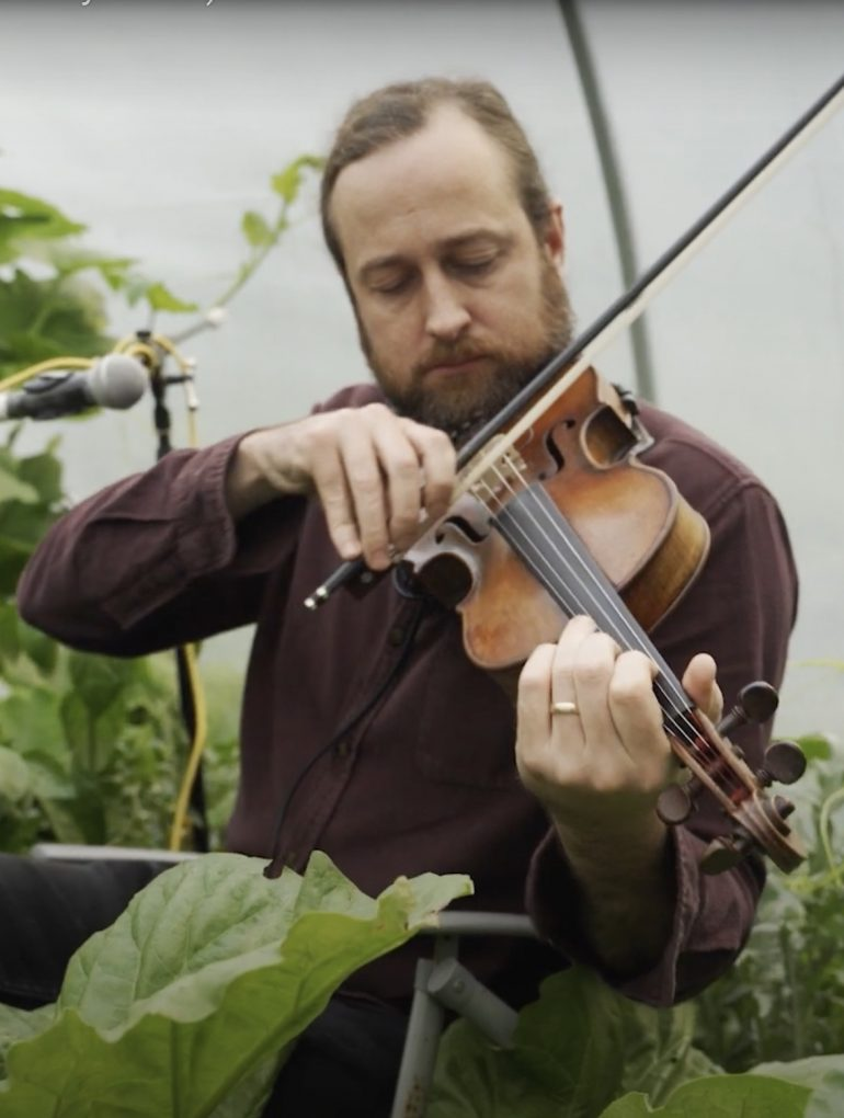 Doppler - live from the polytunnel